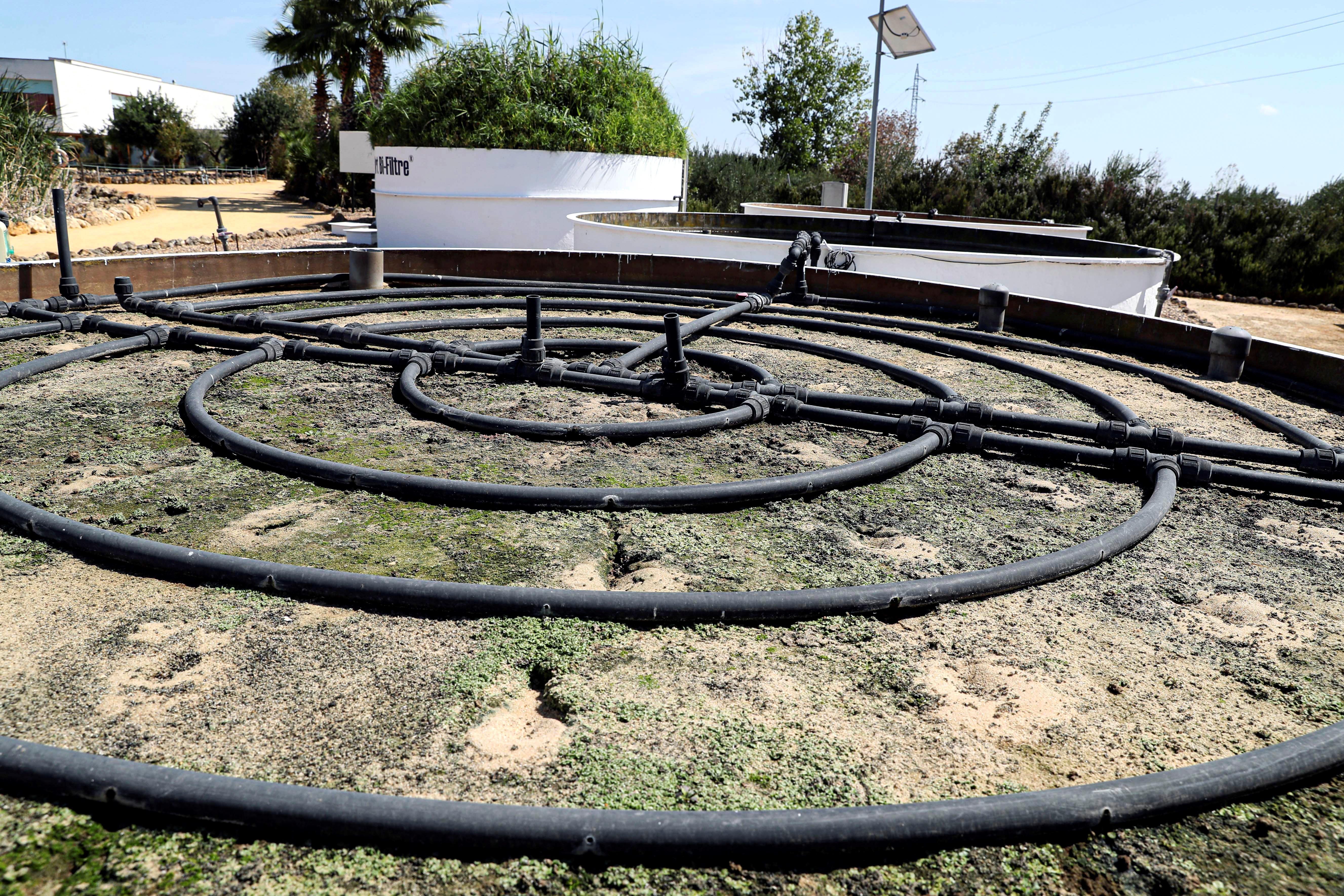 En busca de un prototipo para secar residuos urbanos con energía solar
